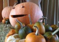 2014-10-26-Herbstfrühschoppen